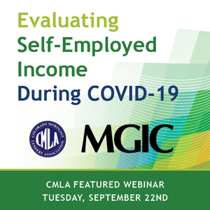 Evaluating Self-Employed Income During COVID-19
